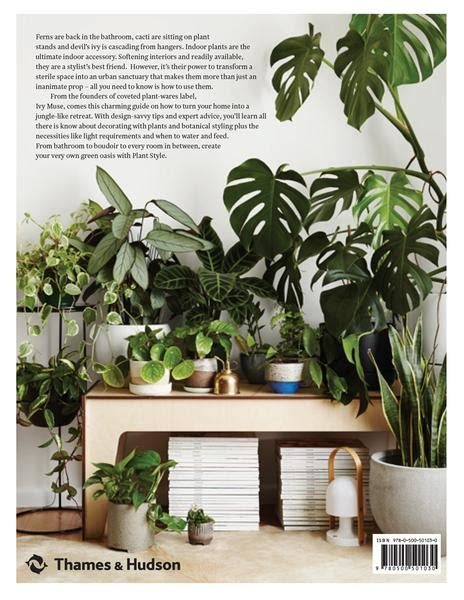 Plant Style: How to greenify your space – IVY MUSE