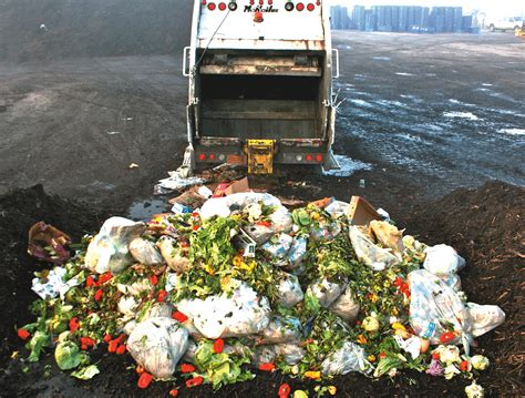 Food Waste: The Facts Behind The One Issue We Can't Ignore