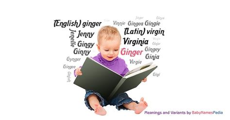 Ginger - Meaning of Ginger, What does Ginger mean?
