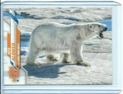 Pete Alonso Polar Bear card from 2020 Topps Series 1