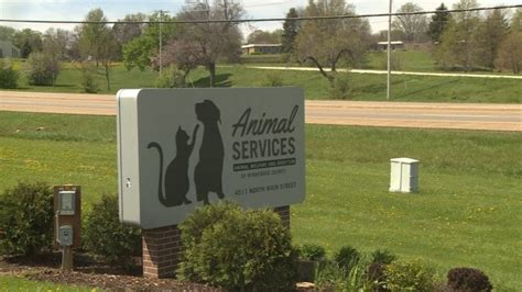 Dogs at Winnebago County Animal Services test positive for