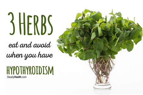 Low Thyroid Treatment from your Kitchen: 3 Herbs to Eat